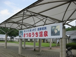 Kitsune_img_7152